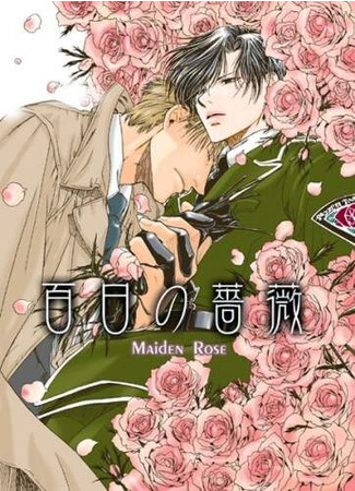 хентай аниме Нетронутая Роза (Maiden Rose: Hyakujitsu no Bara) 01.03.21